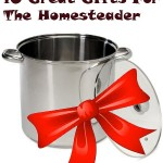 10 Great Christmas Gift Ideas for the New Homesteader
